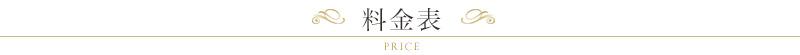 price_ttl01