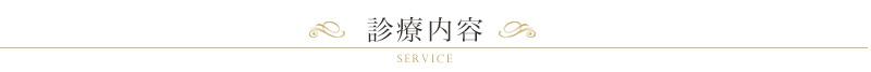 service_ttl01